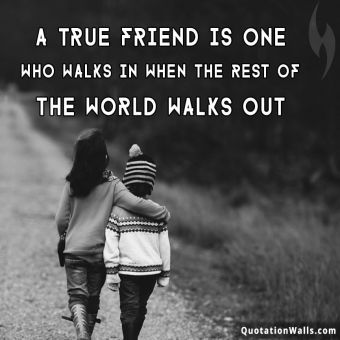 Life quote: A true friend is one who walks in when the rest of the world walks out.