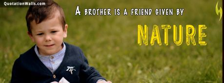 Sister quote: A brother is a friend given by Nature.