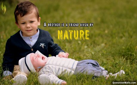 Love quote desktop: A brother is a friend given by Nature.