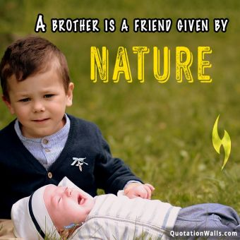 Relationship quote: A brother is a friend given by Nature.