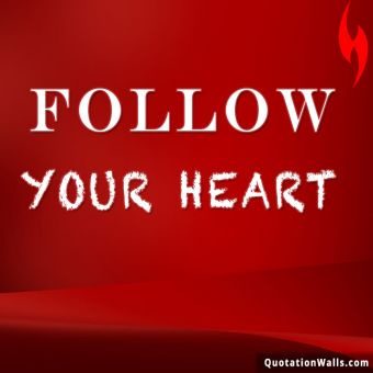 Never Give Up quote: Follow your heart