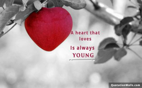 Love quote mobile:  A heart that love is always young.