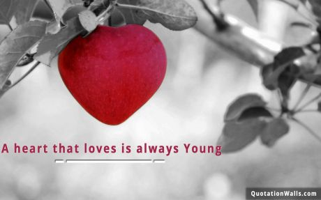 Love quote:  A heart that love is always young.