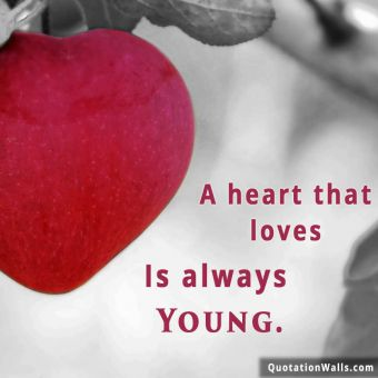 Love quote whatsapp:  A heart that love is always young.