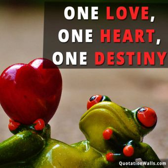 Destiny quote: One love, one heart, one destiny.