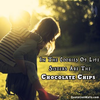 Love quote whatsapp: In the cookies of life, sisters are the chocolate chips.