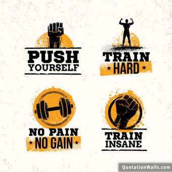 Motivational quote whatsapp: Push Yourself. Train Hard. No Pain no gain. Train Insane