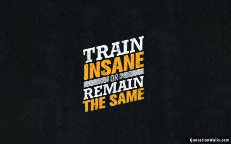 Motivational quote desktop: Train insane or remain the same.