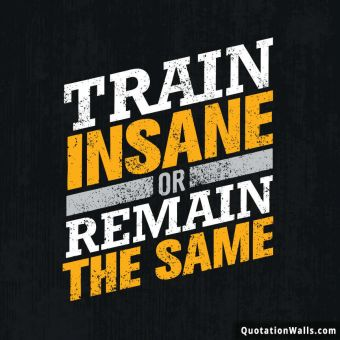 Motivational quote whatsapp: Train insane or remain the same.